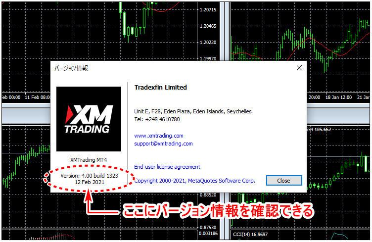XM_デモ口座バージョン情報確認_pc2