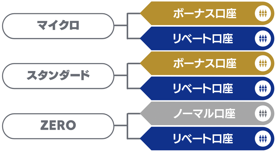 XMの6種類の口座タイプ内訳図